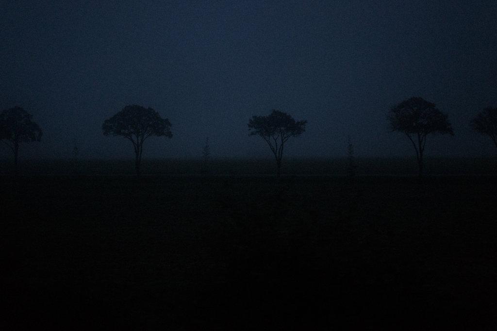 crepuscule-4.jpg
